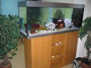 Продам аквариум с объемом 400 литров
