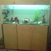 аквариум с оборудованием